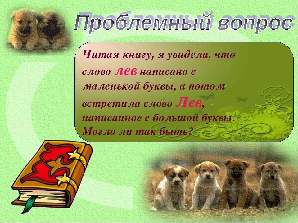 Читая книгу, я увидела, что слово лев написано с маленькой буквы, а потом вст...
