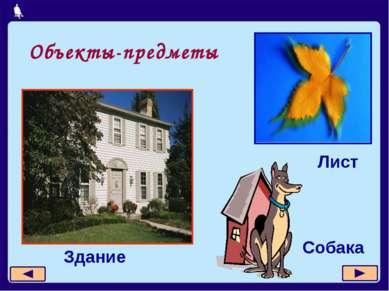 Объекты-предметы Здание Лист Собака