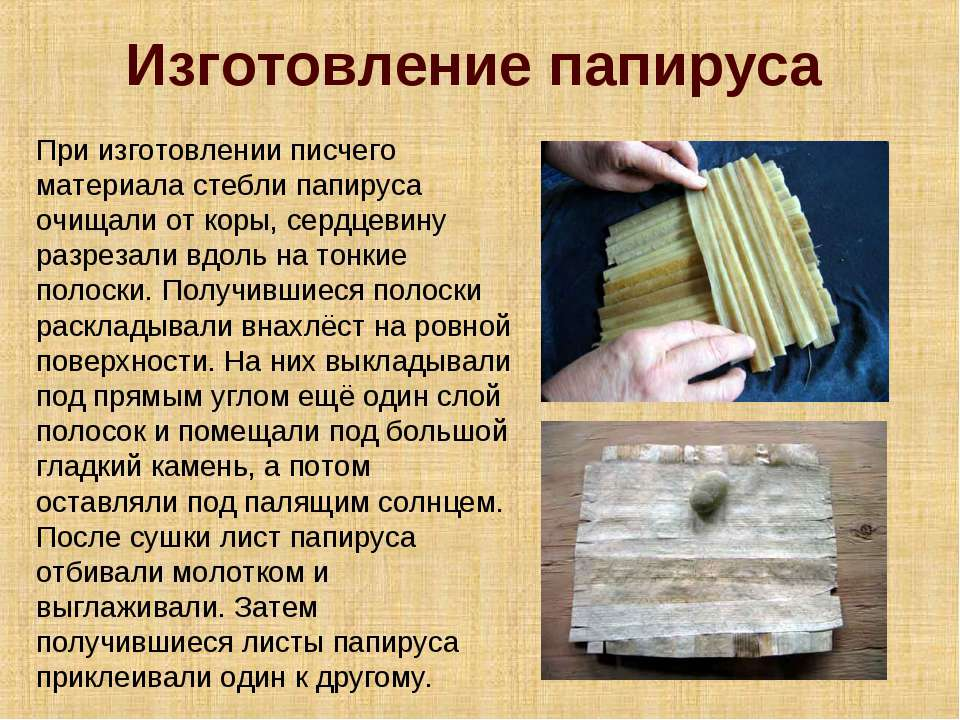 Изготовление папируса При изготовлении писчего материала стебли папируса очищ...
