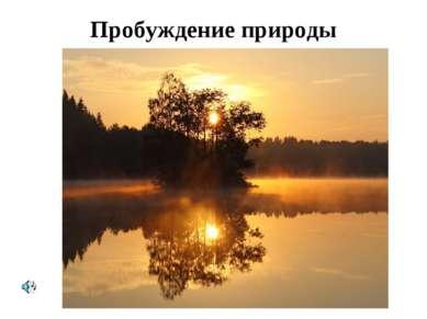 Пробуждение природы