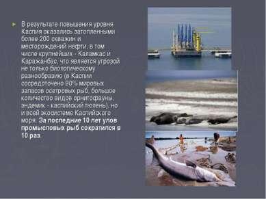 В результате повышения уровня Каспия оказались затопленными более 200 скважин...