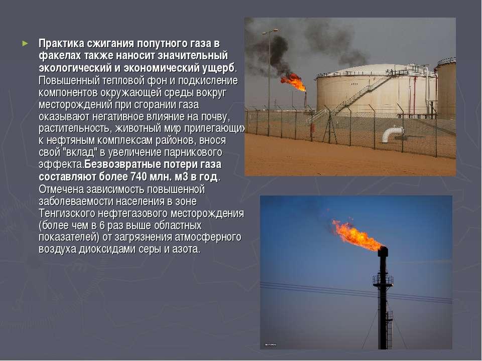 Практика сжигания попутного газа в факелах также наносит значительный экологи...