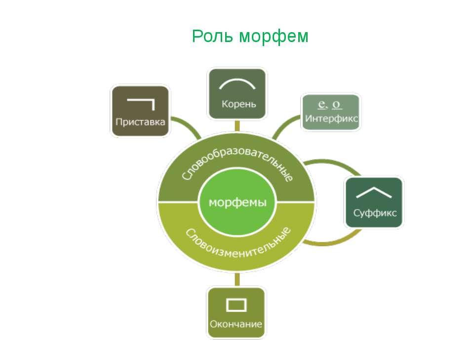 Роль морфем