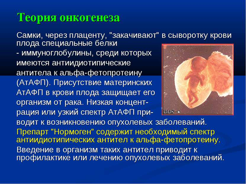 """Теория онкогенеза Самки, через плаценту, """"закачивают"""" в сыворотку крови плода..."""