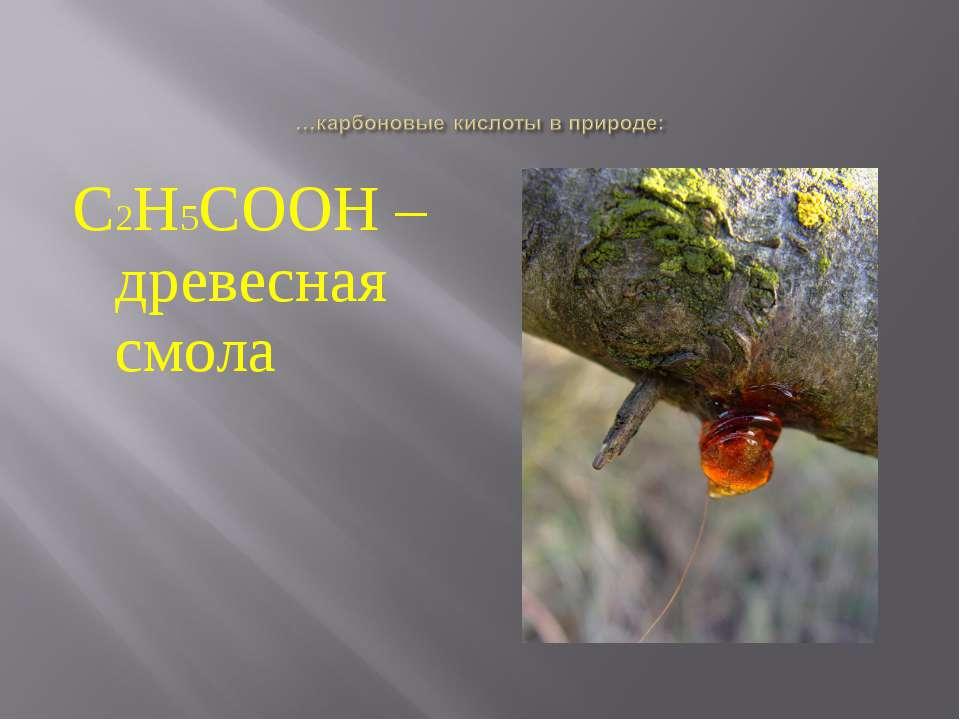 С2Н5СООН – древесная смола