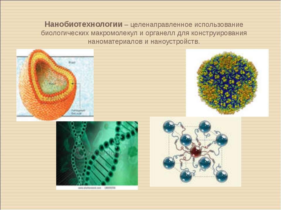 Нанобиотехнологии – целенаправленное использование биологических макромолекул...