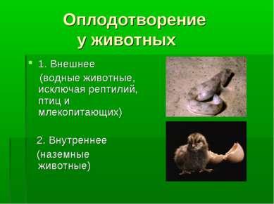 Оплодотворение у животных 1. Внешнее (водные животные, исключая рептилий, пти...