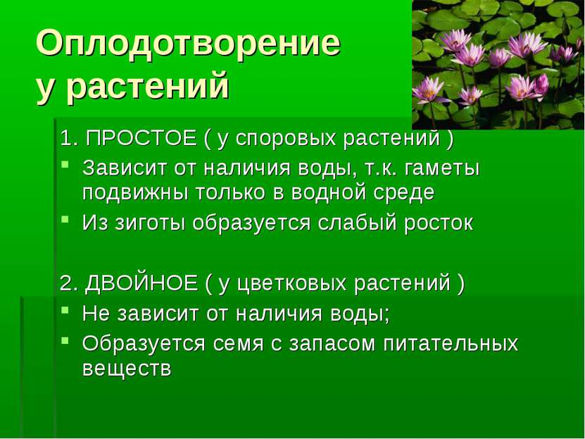 Оплодотворение у растений 1. ПРОСТОЕ ( у споровых растений ) Зависит от налич...
