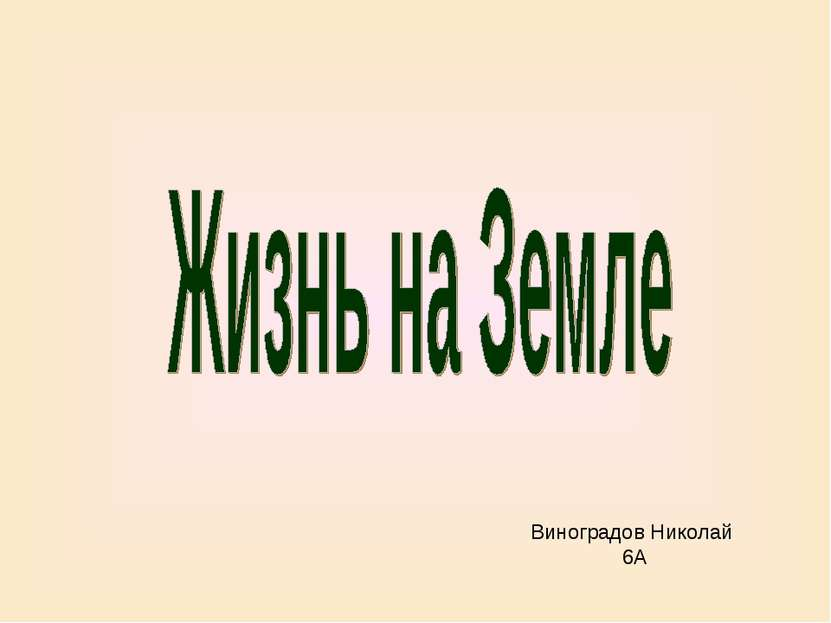 Виноградов Николай 6А