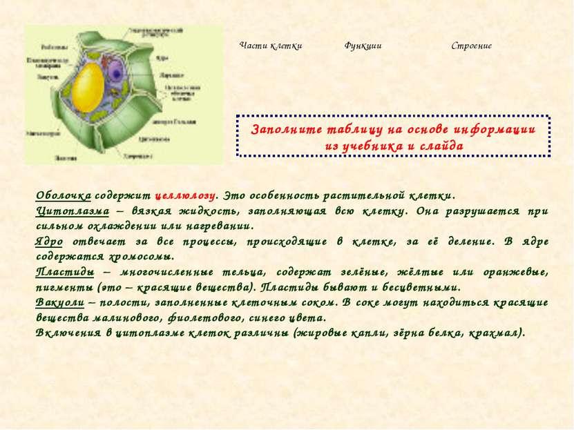Заполните таблицу на основе информации из учебника и слайда Оболочка содержит...