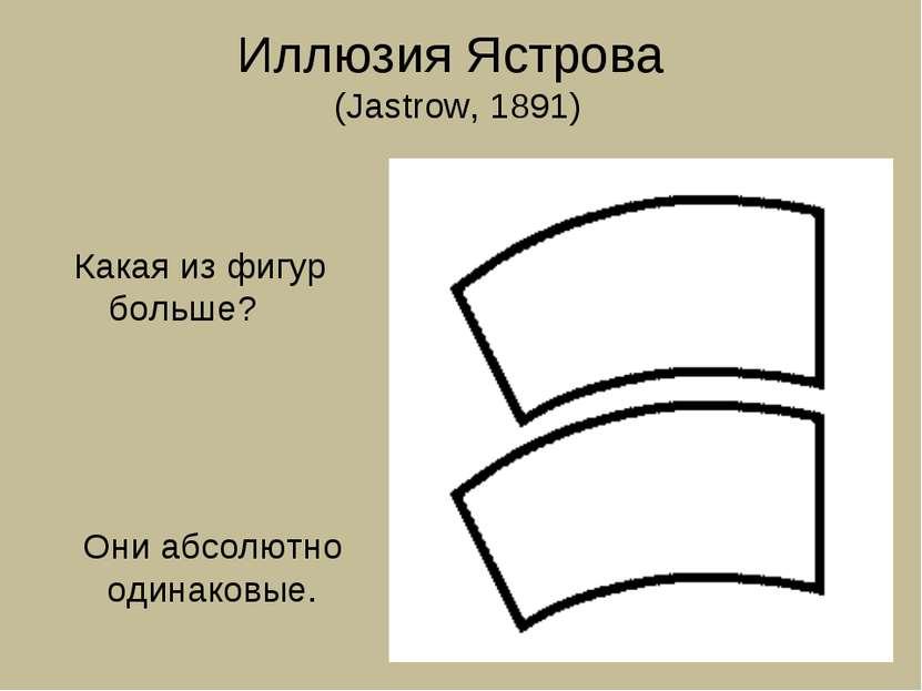 Иллюзия Ястрова (Jastrow, 1891) Какая из фигур больше? Они абсолютно одинаковые.