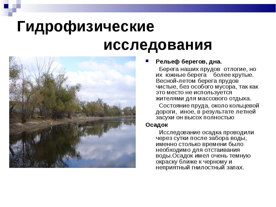 Гидрофизические исследования Рельеф берегов, дна. Берега наших прудов отлогие...