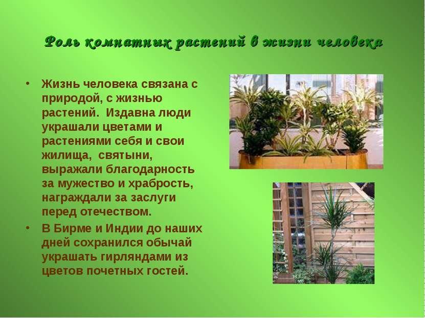 Роль комнатных растений в жизни человека Жизнь человека связана с природой, с...