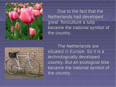 Due to the fact that the Netherlands had developed great floriculture a tulip...