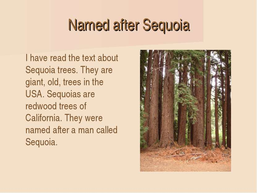 Named after Sequoia I have read the text about Sequoia trees. They are giant,...