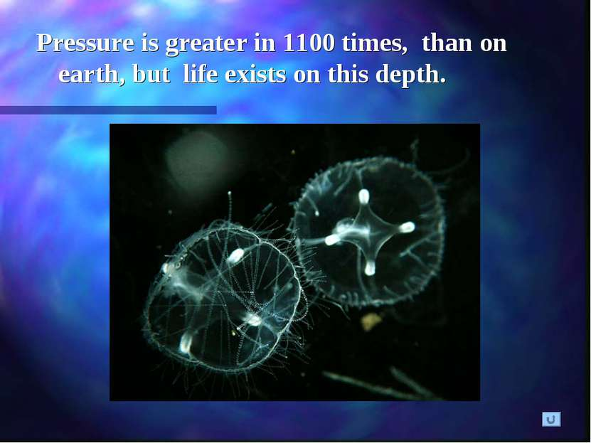 Pressure is greater in 1100 times, than on earth, but life exists on this depth.