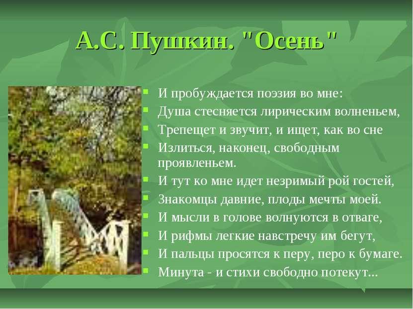 """А.С. Пушкин. """"Осень"""" И пробуждается поэзия во мне: Душа стесняется лирическим..."""