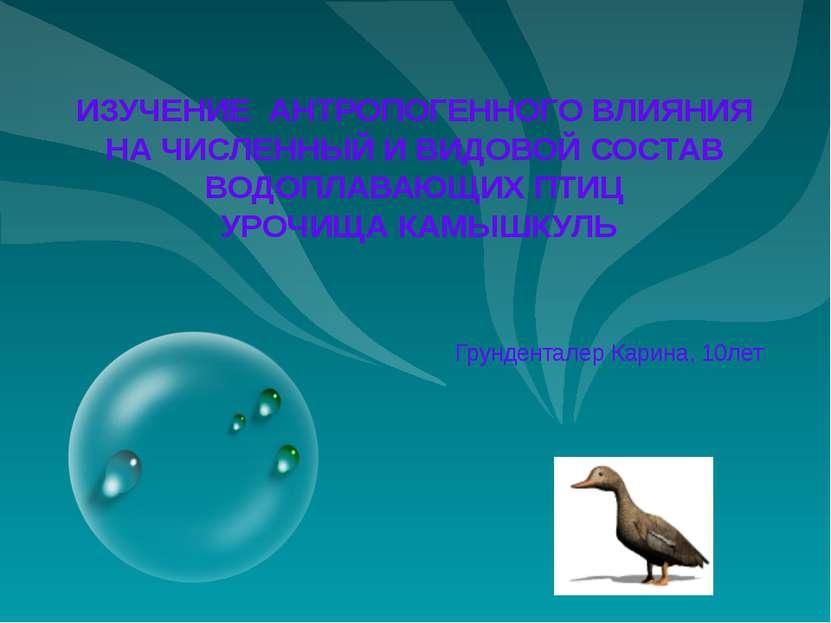 ИЗУЧЕНИЕ АНТРОПОГЕННОГО ВЛИЯНИЯ НА ЧИСЛЕННЫЙ И ВИДОВОЙ СОСТАВ ВОДОПЛАВАЮЩИХ П...