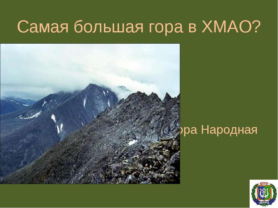 Самая большая гора в ХМАО? Гора Народная