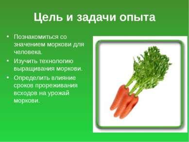 Цель и задачи опыта Познакомиться со значением моркови для человека. Изучить ...