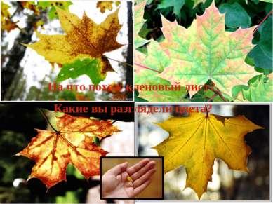 На что похож кленовый лист? Какие вы разглядели цвета?