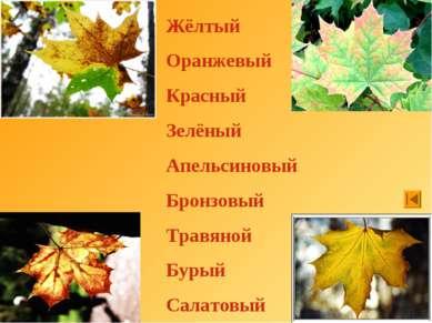 Жёлтый Оранжевый Красный Зелёный Апельсиновый Бронзовый Травяной Бурый Салатовый