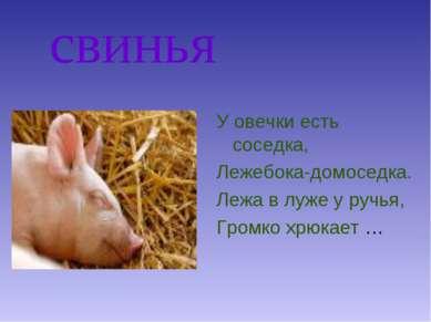 свинья У овечки есть соседка, Лежебока-домоседка. Лежа в луже у ручья, Громко...