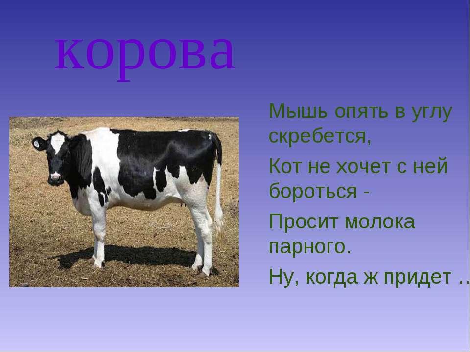 корова Мышь опять в углу скребется, Кот не хочет с ней бороться - Просит моло...