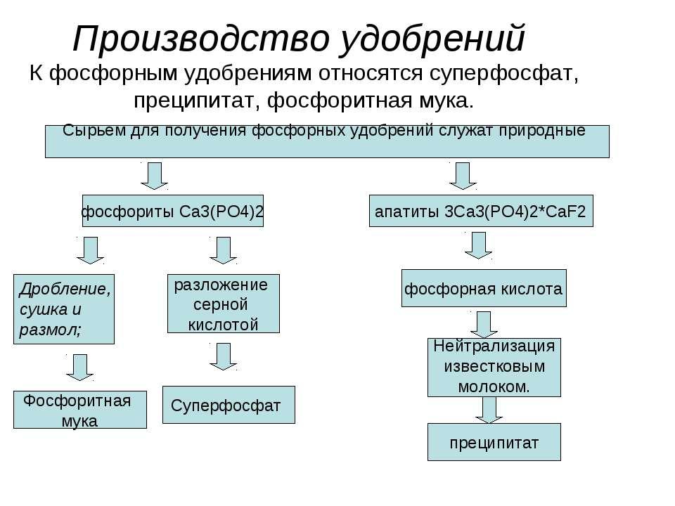 Производство удобрений К фосфорным удобрениям относятся суперфосфат, преципит...