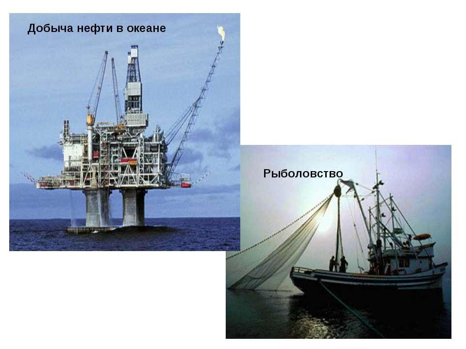 Рыболовство Добыча нефти в океане
