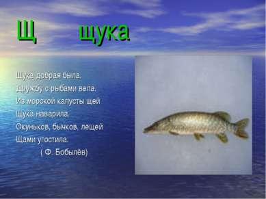Щ щука Щука добрая была. Дружбу с рыбами вела. Из морской капусты щей Щука на...