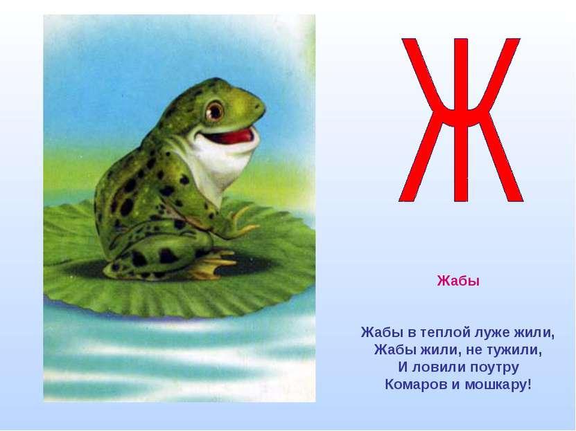 Жабы Жабы в теплой луже жили, Жабы жили, не тужили, И ловили поутру Комаров и...