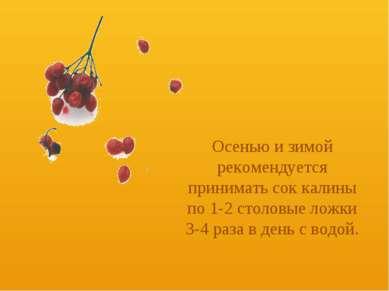 Осенью и зимой рекомендуется принимать сок калины по 1-2 столовые ложки 3-4 р...