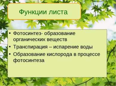 Фотосинтез- образование органических веществ Транспирация – испарение воды Об...