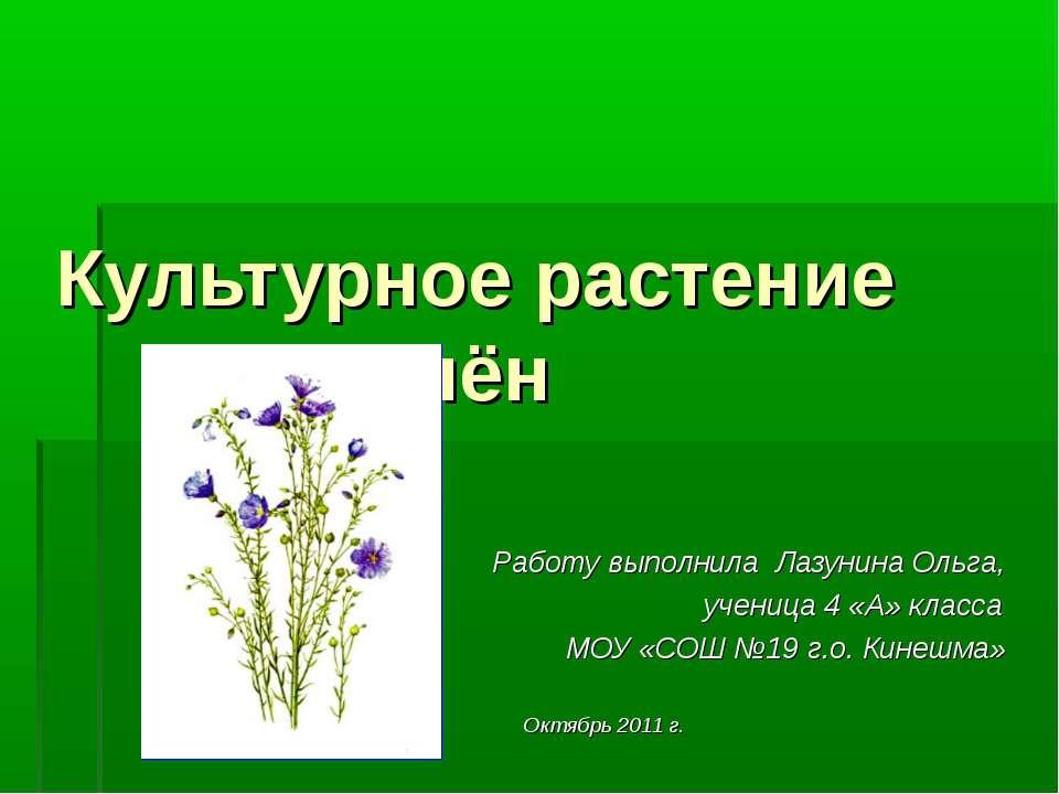 Культурное растение лён Работу выполнила Лазунина Ольга, ученица 4 «А» класса...