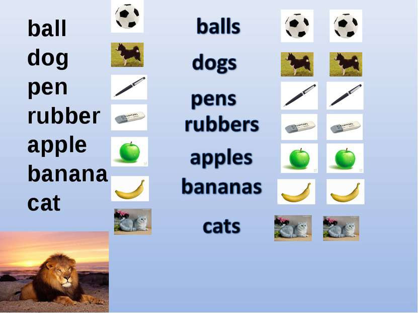 ball dog pen rubber apple banana cat