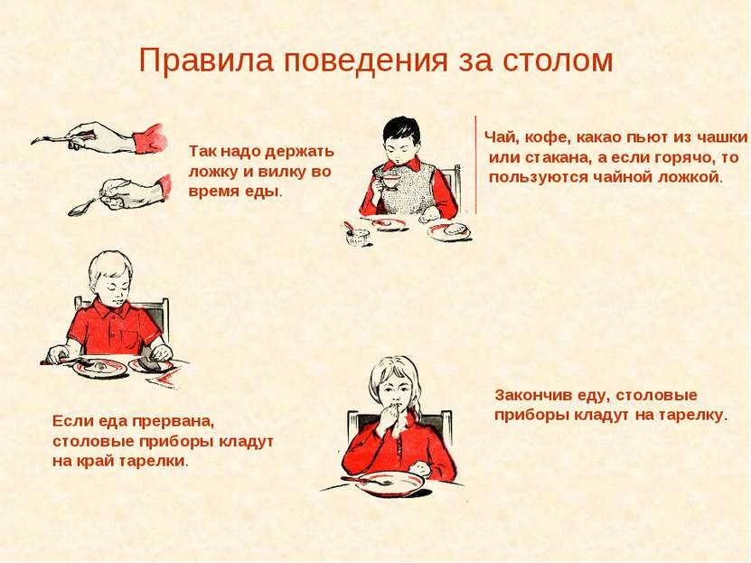 Правила поведения за столом Так надо держать ложку и вилку во время еды. Если...