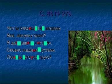 С. 86 № 279. Что ты клонишь над водами Ива, макушку свою? И дрожащими листами...