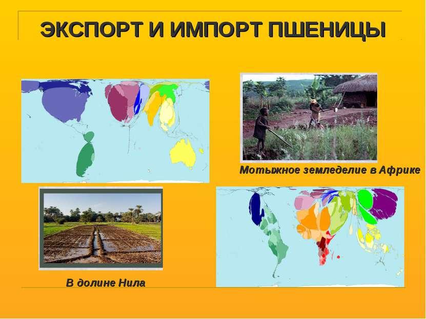 ЭКСПОРТ И ИМПОРТ ПШЕНИЦЫ Мотыжное земледелие в Африке В долине Нила