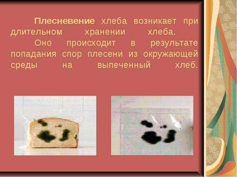 Плесневение хлеба возникает при длительном хранении хлеба. Оно происходит в р...