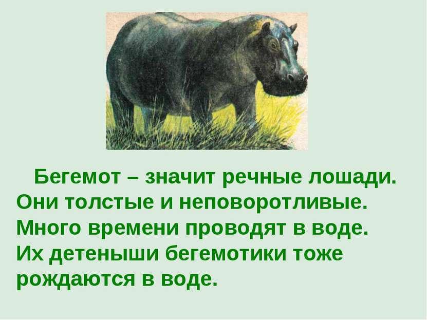 Бегемот – значит речные лошади. Они толстые и неповоротливые. Много времени п...