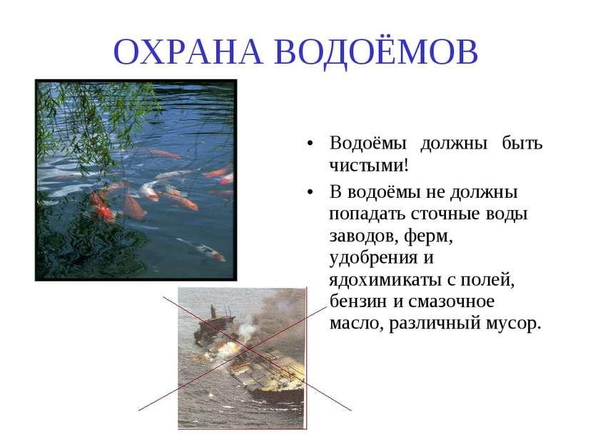 ОХРАНА ВОДОЁМОВ Водоёмы должны быть чистыми! В водоёмы не должны попадать сто...