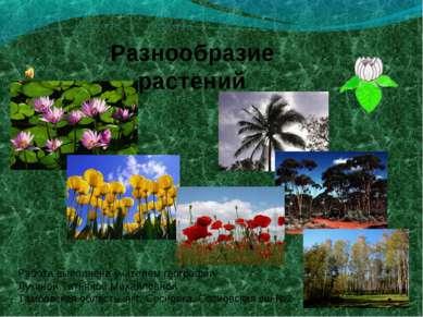 Разнообразие растений Работа выполнена учителем географии Лукиной Татьяной Ми...