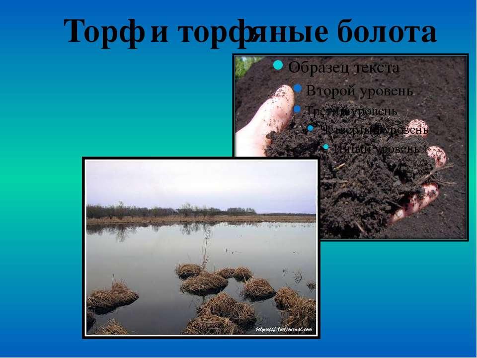 Торф и торфяные болота