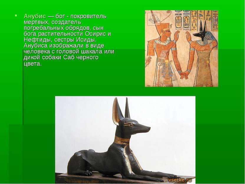 Анубис — бог - покровитель мертвых, создатель погребальных обрядов, сын бога ...