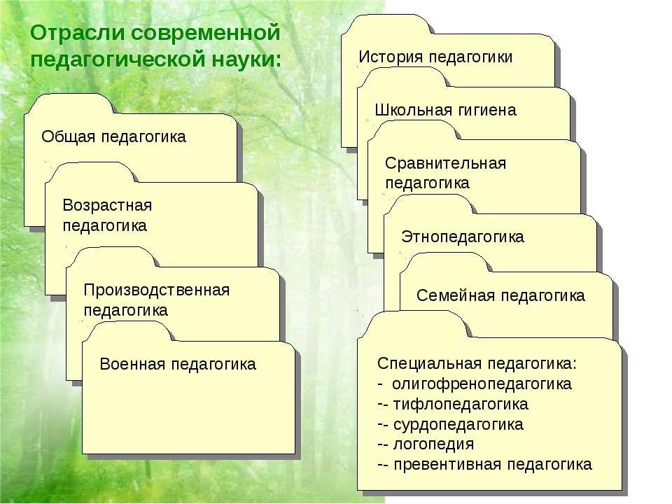 Отрасли современной педагогической науки: Общая педагогика Возрастная педагог...