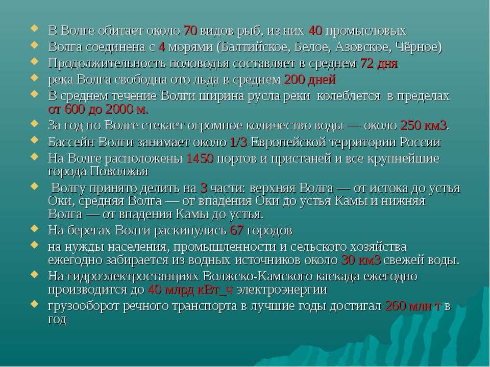 В Волге обитает около 70 видов рыб, из них 40 промысловых Волга соединена с 4...