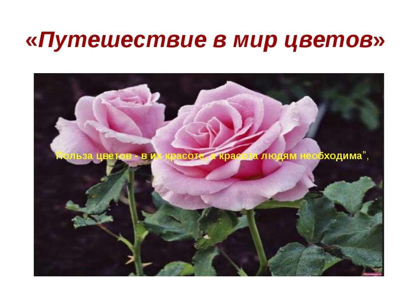 «Путешествие в мир цветов» Польза цветов - в их красоте, а красота людям необ...