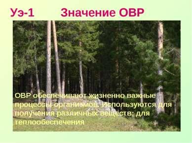 Уэ-1 Значение ОВР ОВР обеспечивают жизненно важные процессы организмов. Испол...