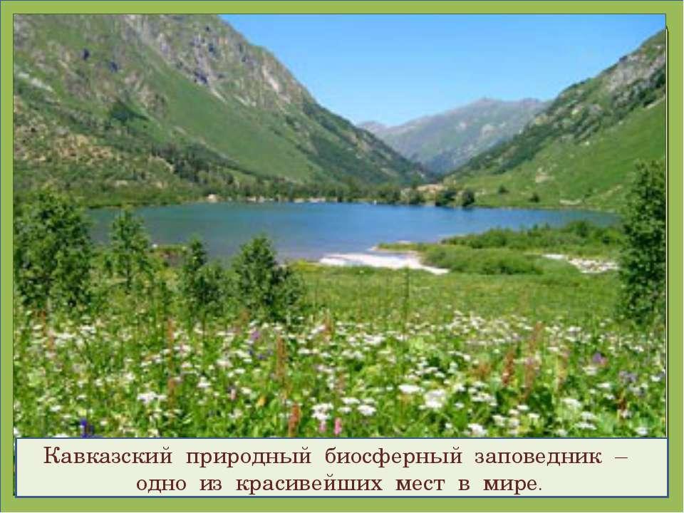 Кавказский природный биосферный заповедник – одно из красивейших мест в мире.